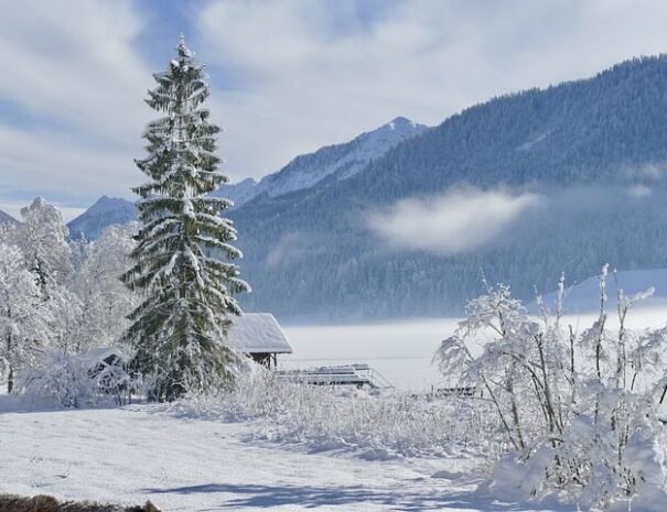 snow-3062520__480-1
